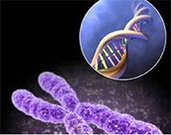 Как генетики борются с псориазом