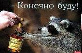 Адреноголизм - по аналогии с алкоголизмом