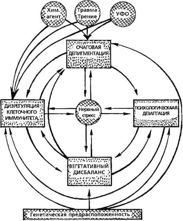 Схема патогенетических механизмов витилиго. Причины витилиго.